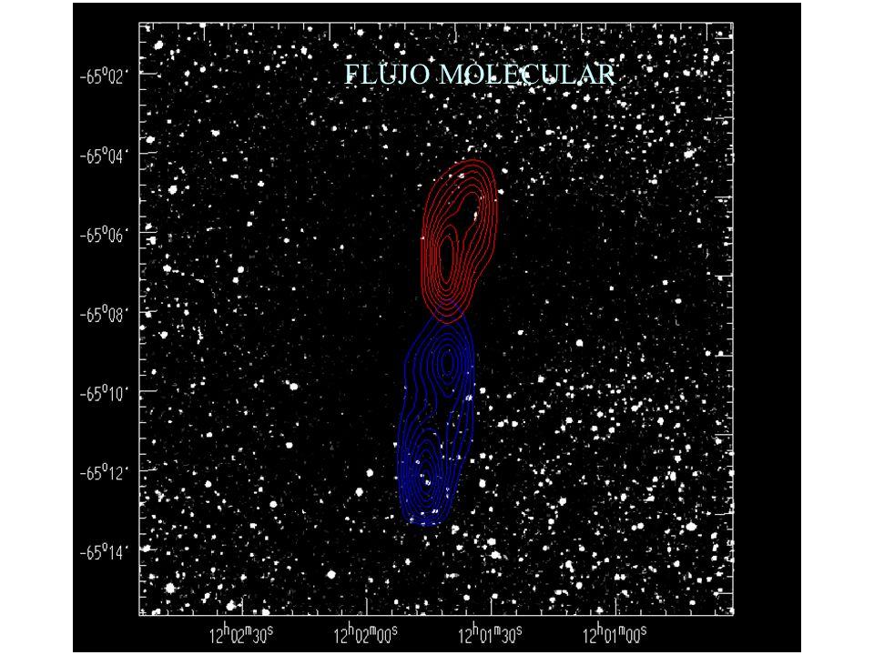 FLUJO MOLECULAR