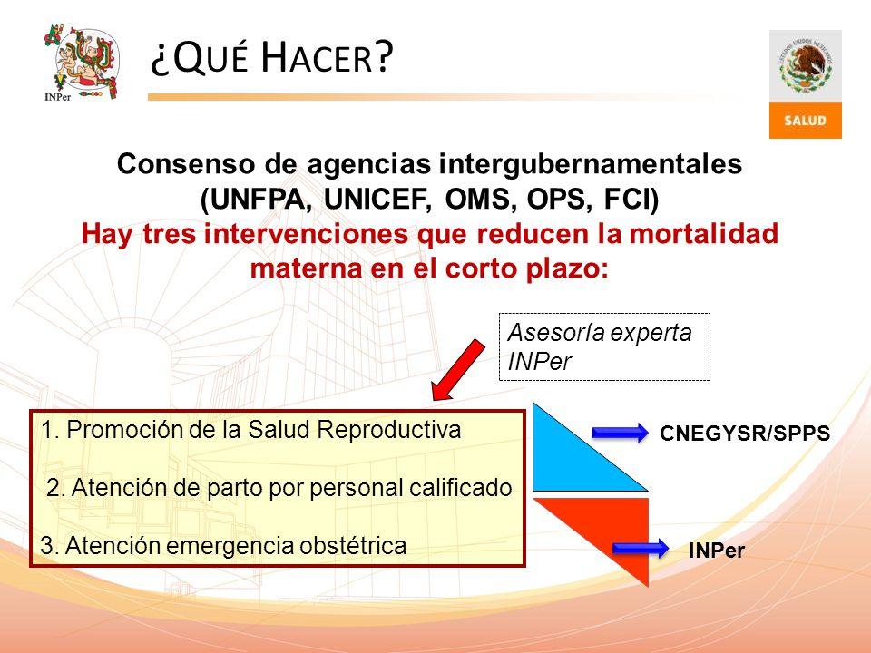 ¿Qué Hacer Consenso de agencias intergubernamentales (UNFPA, UNICEF, OMS, OPS, FCI)