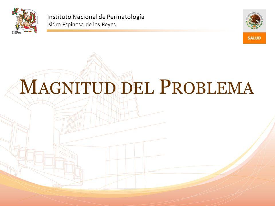Magnitud del Problema Instituto Nacional de Perinatología