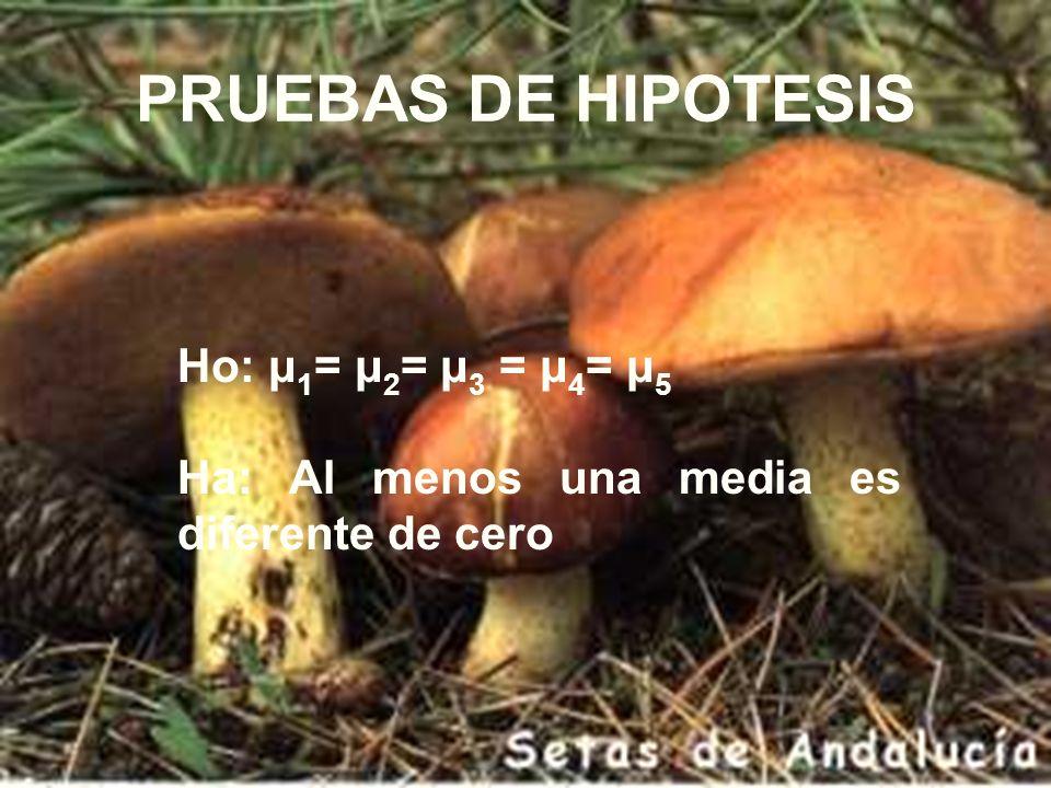 PRUEBAS DE HIPOTESIS Ho: μ1= μ2= μ3 = μ4= μ5