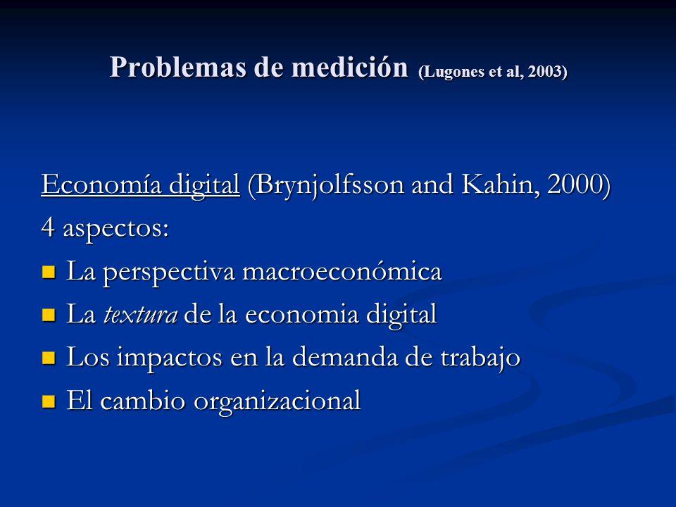 Problemas de medición (Lugones et al, 2003)