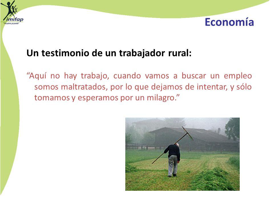 Economía Un testimonio de un trabajador rural: