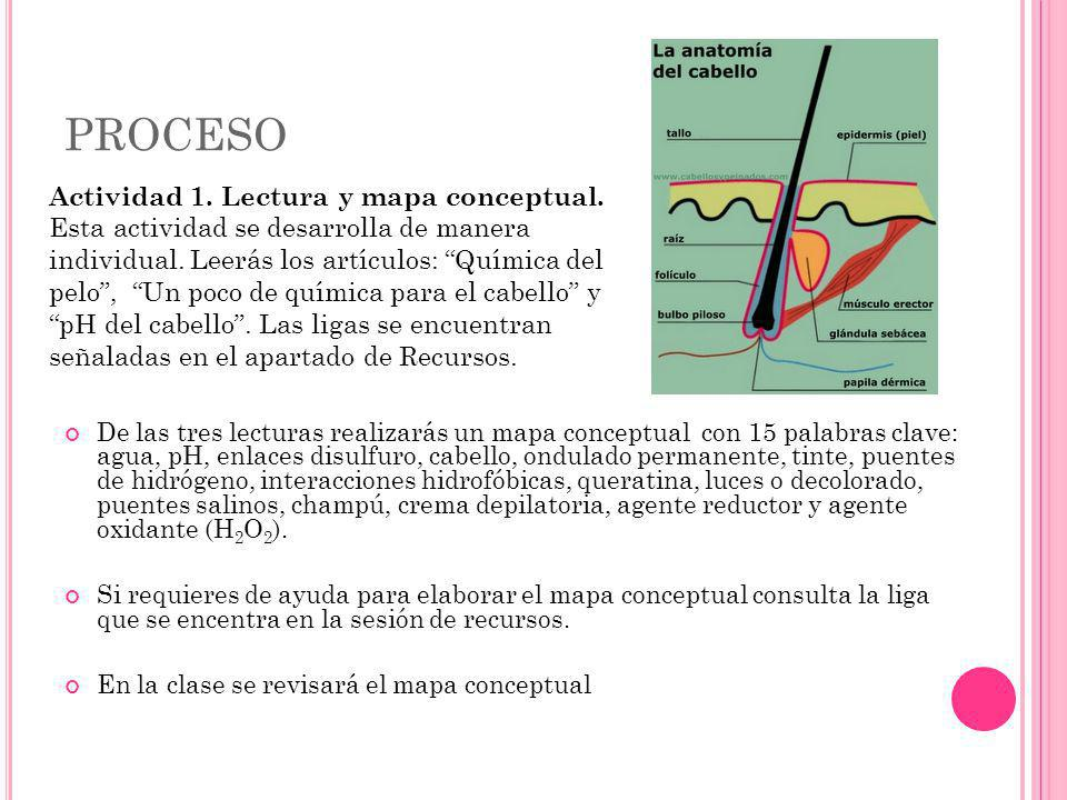 PROCESO Actividad 1. Lectura y mapa conceptual.