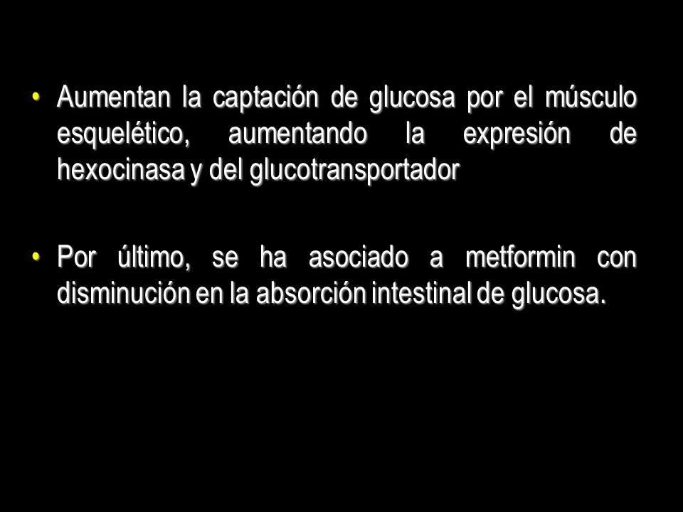 Aumentan la captación de glucosa por el músculo esquelético, aumentando la expresión de hexocinasa y del glucotransportador