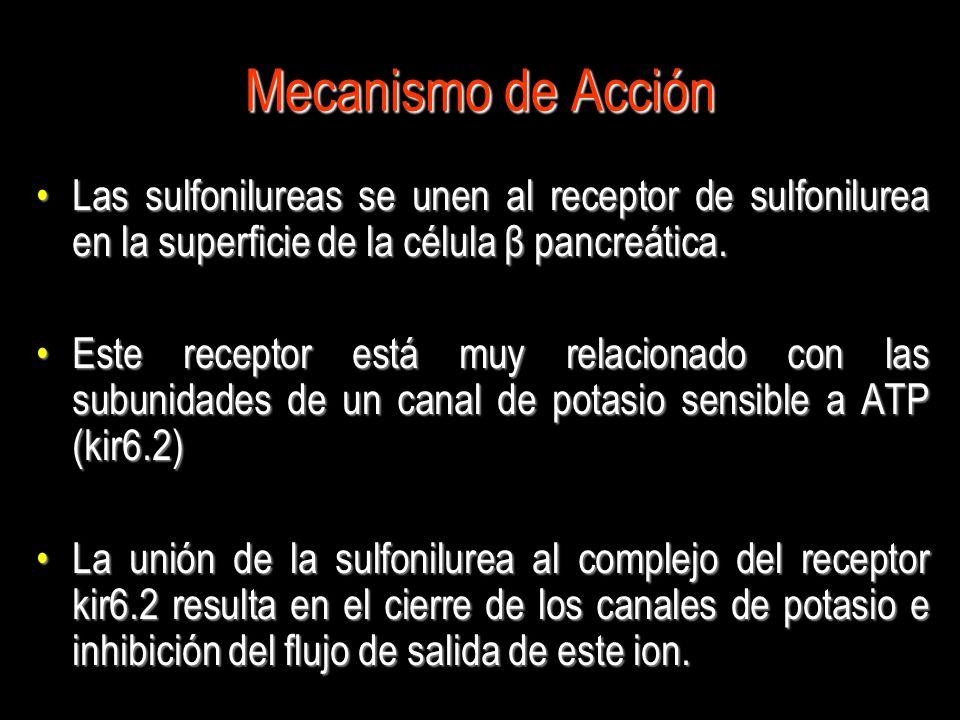 Mecanismo de Acción Las sulfonilureas se unen al receptor de sulfonilurea en la superficie de la célula β pancreática.