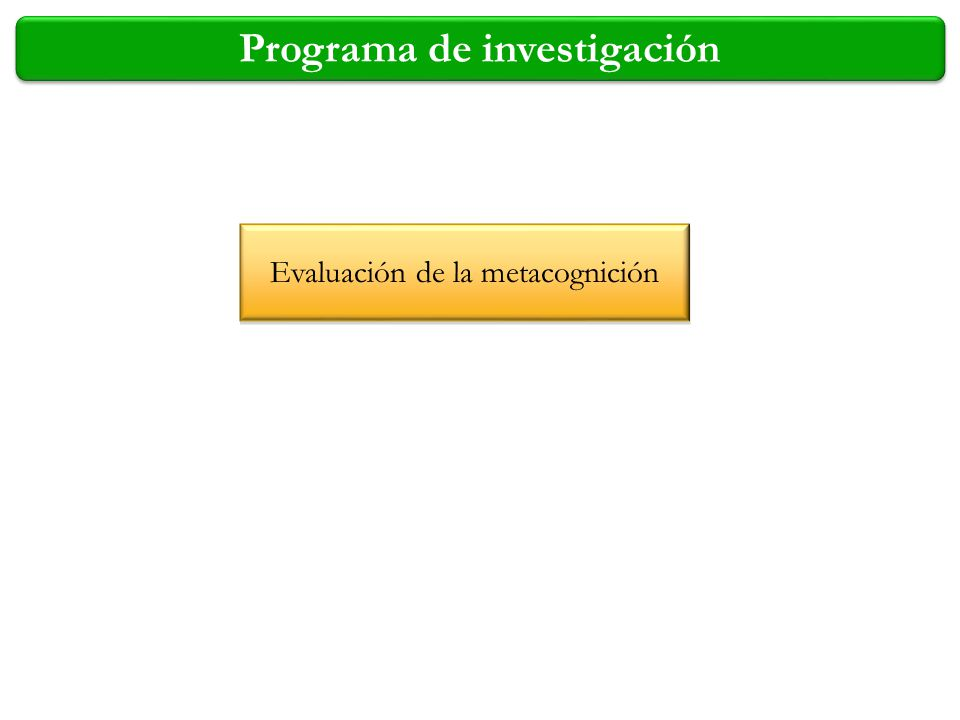 Programa de investigación
