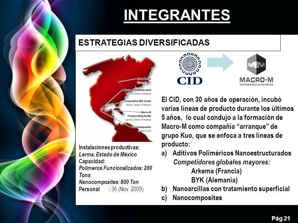 INTEGRANTES 21 ESTRATEGIAS DIVERSIFICADAS