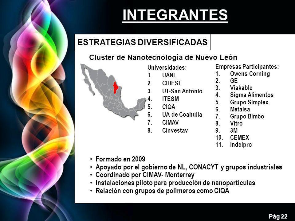 Cluster de Nanotecnología de Nuevo León