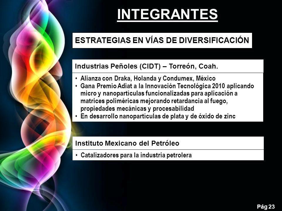 INTEGRANTES 23 ESTRATEGIAS EN VÍAS DE DIVERSIFICACIÓN