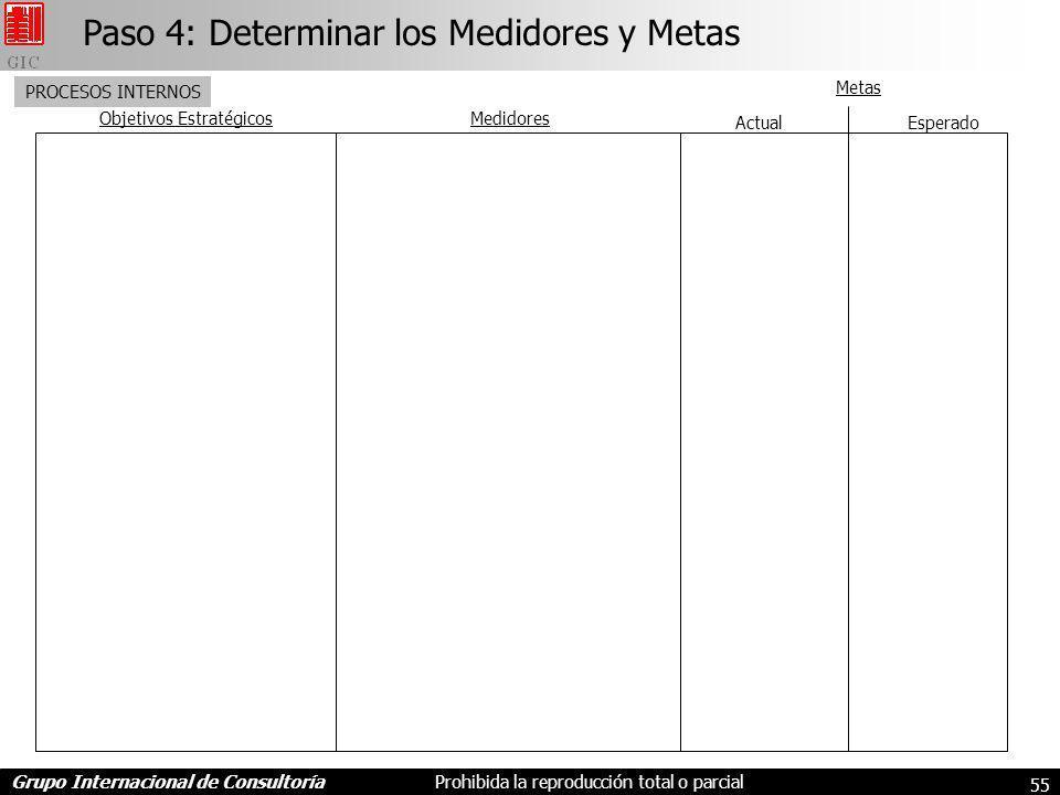 Paso 4: Determinar los Medidores y Metas