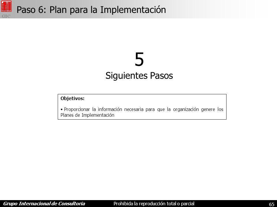 5 Paso 6: Plan para la Implementación Siguientes Pasos Objetivos: