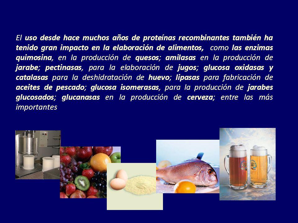 El uso desde hace muchos años de proteínas recombinantes también ha tenido gran impacto en la elaboración de alimentos, como las enzimas quimosina, en la producción de quesos; amilasas en la producción de jarabe; pectinasas, para la elaboración de jugos; glucosa oxidasas y catalasas para la deshidratación de huevo; lipasas para fabricación de aceites de pescado; glucosa isomerasas, para la producción de jarabes glucosados; glucanasas en la producción de cerveza; entre las más importantes