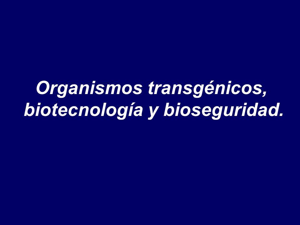 Organismos transgénicos, biotecnología y bioseguridad.