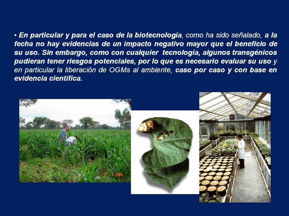 En particular y para el caso de la biotecnología, como ha sido señalado, a la fecha no hay evidencias de un impacto negativo mayor que el beneficio de su uso.