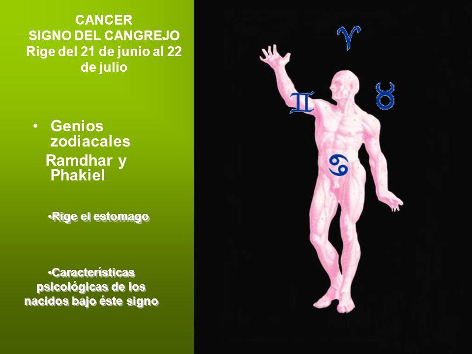 CANCER SIGNO DEL CANGREJO Rige del 21 de junio al 22 de julio