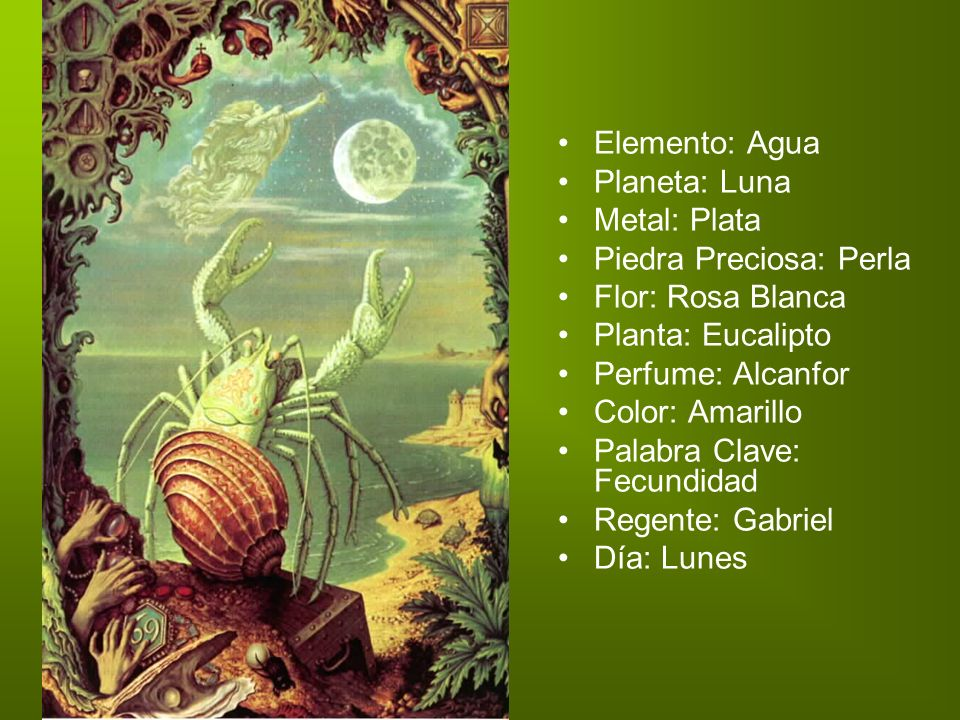 Elemento: Agua Planeta: Luna Metal: Plata Piedra Preciosa: Perla Flor: Rosa Blanca Planta: Eucalipto.