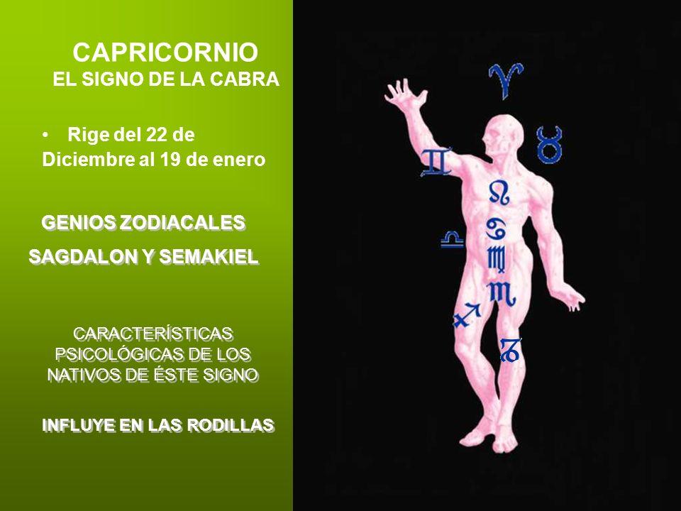 CAPRICORNIO EL SIGNO DE LA CABRA