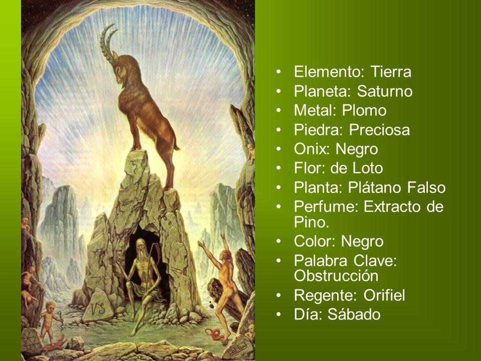 Elemento: Tierra Planeta: Saturno Metal: Plomo Piedra: Preciosa Onix: Negro Flor: de Loto Planta: Plátano Falso