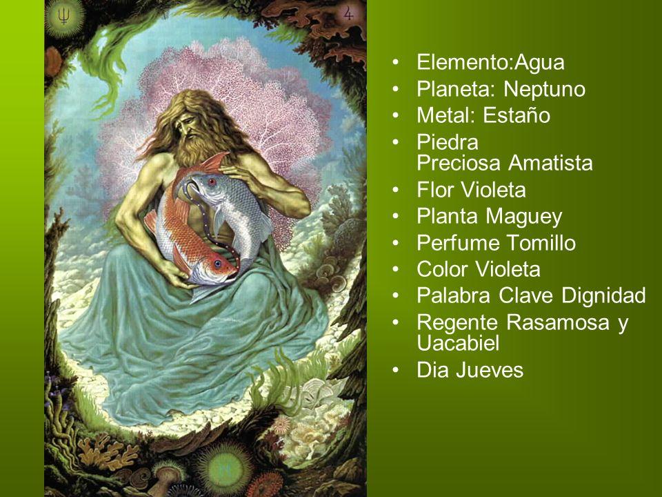 Elemento:Agua Planeta: Neptuno. Metal: Estaño. Piedra Preciosa Amatista. Flor Violeta. Planta Maguey.