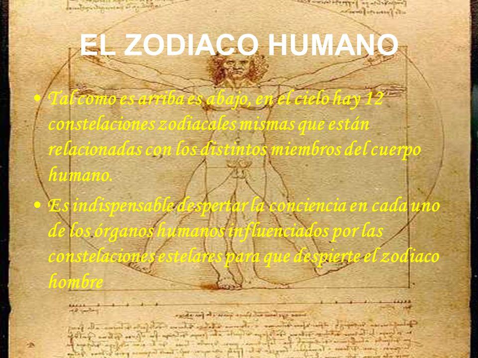 EL ZODIACO HUMANO