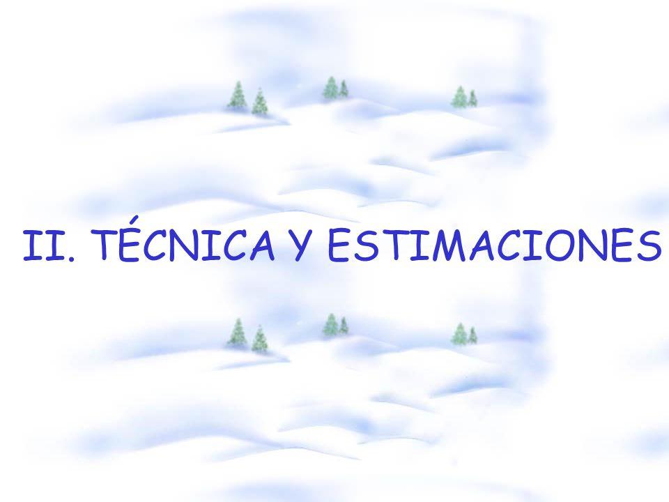 II. TÉCNICA Y ESTIMACIONES