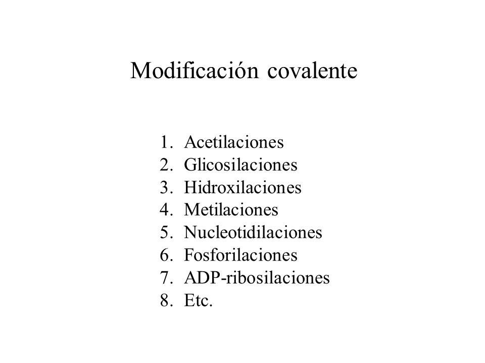 Modificación covalente