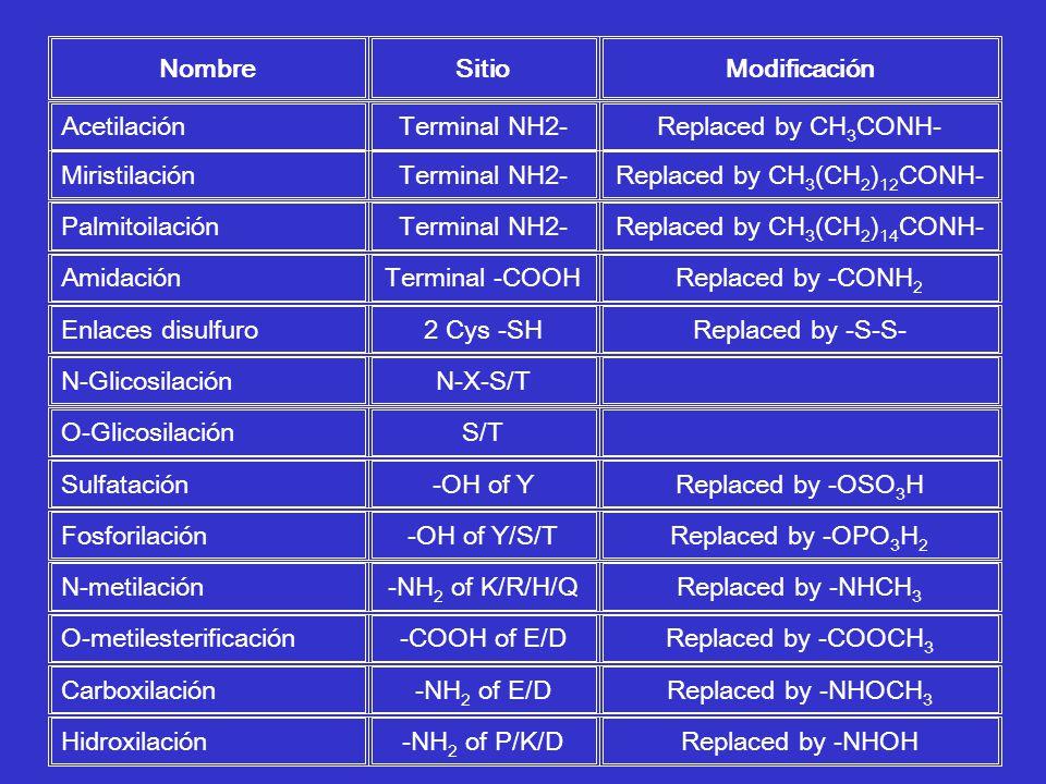 Nombre Sitio Modificación