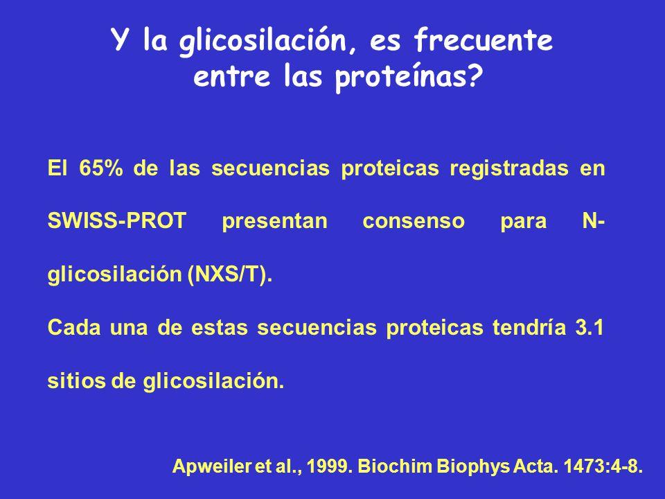 Y la glicosilación, es frecuente