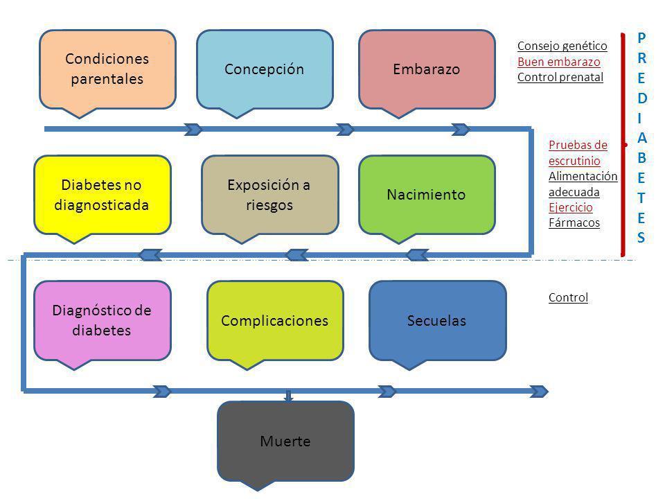 Condiciones parentales Concepción Embarazo