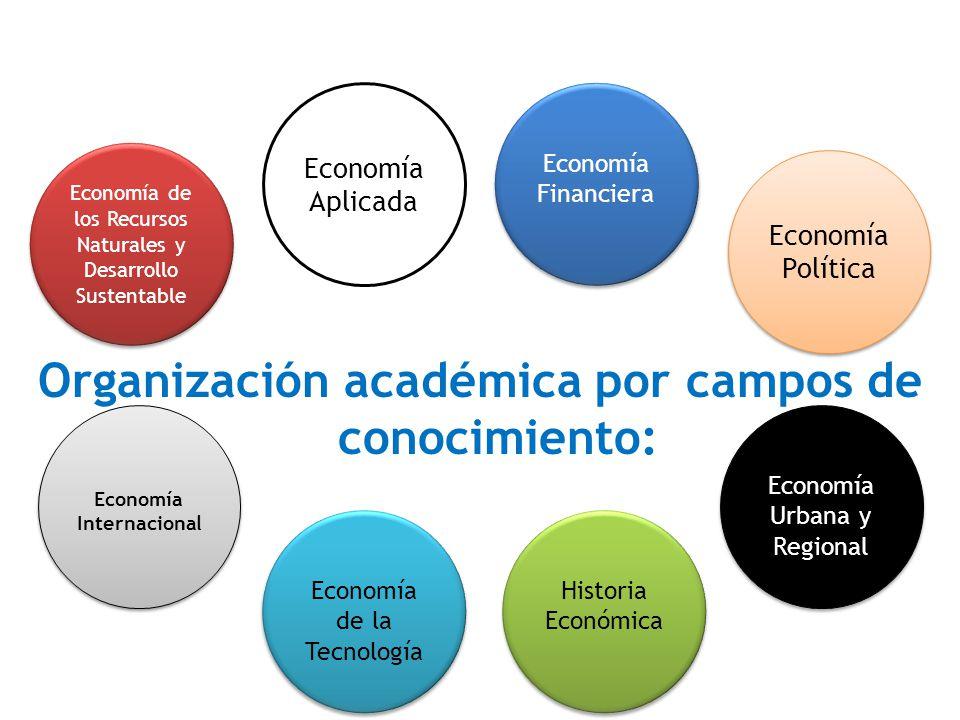 Organización académica por campos de conocimiento: