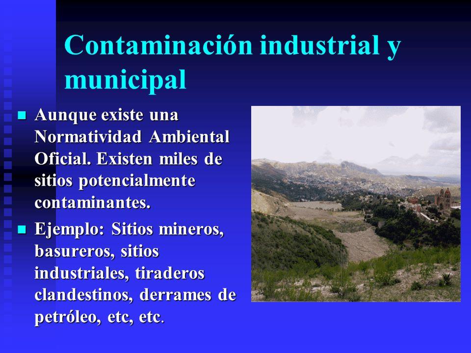 Contaminación industrial y municipal