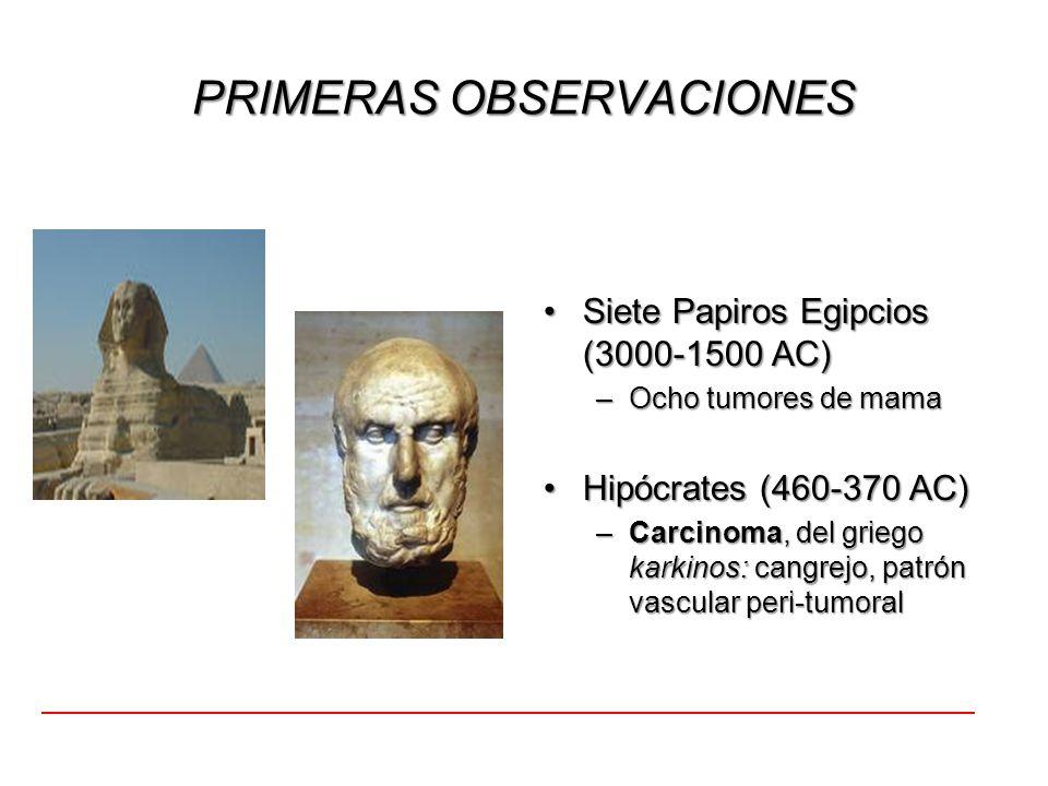 PRIMERAS OBSERVACIONES