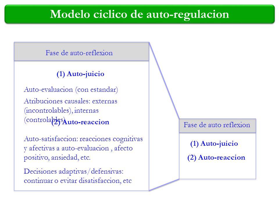 Modelo ciclico de auto-regulacion