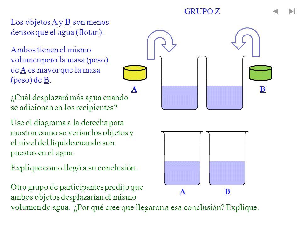 GRUPO Z Los objetos A y B son menos densos que el agua (flotan).