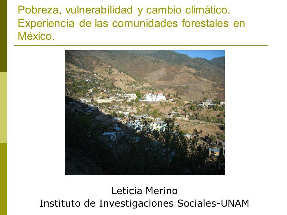 Leticia Merino Instituto de Investigaciones Sociales-UNAM