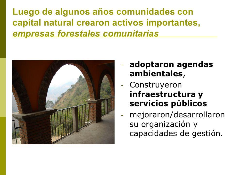 Luego de algunos años comunidades con capital natural crearon activos importantes, empresas forestales comunitarias