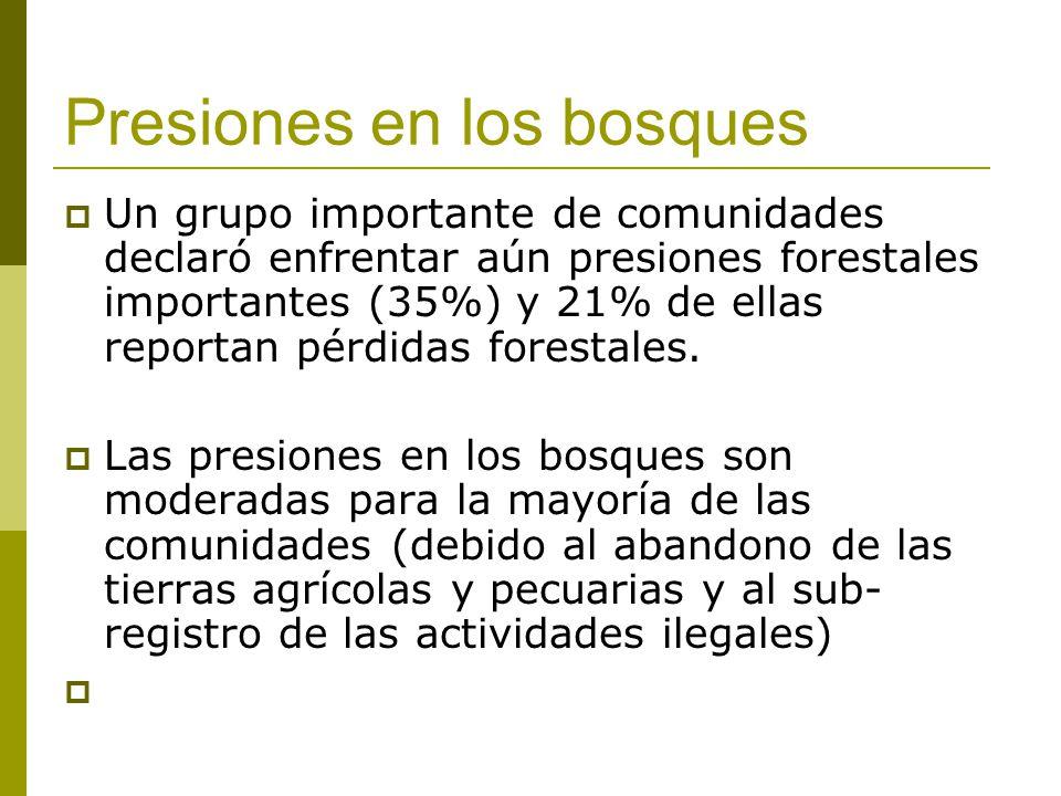 Presiones en los bosques