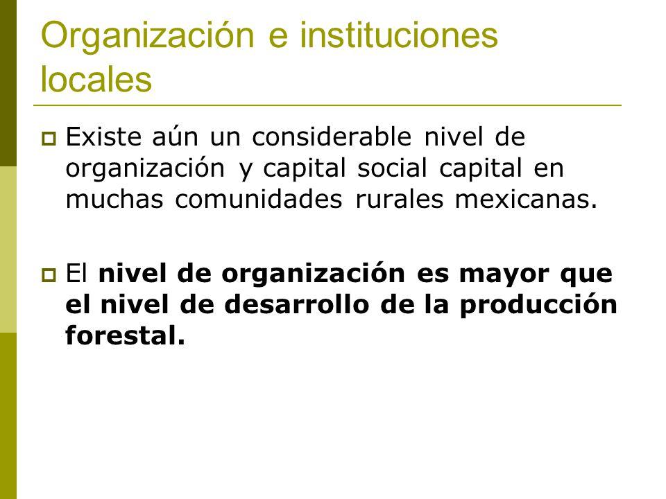 Organización e instituciones locales