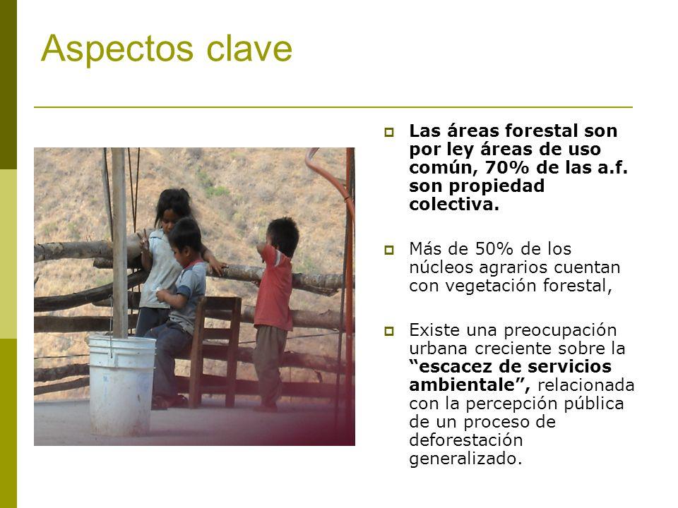 Aspectos clave Las áreas forestal son por ley áreas de uso común, 70% de las a.f. son propiedad colectiva.