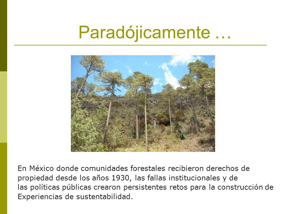 Paradójicamente … En México donde comunidades forestales recibieron derechos de. propiedad desde los años 1930, las fallas institucionales y de.