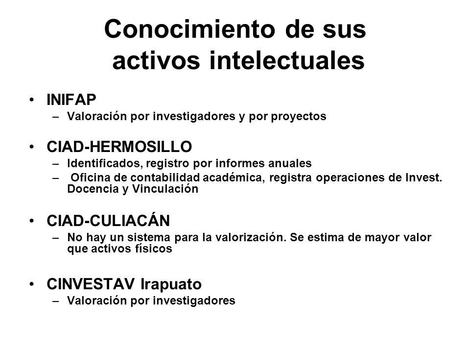 Conocimiento de sus activos intelectuales