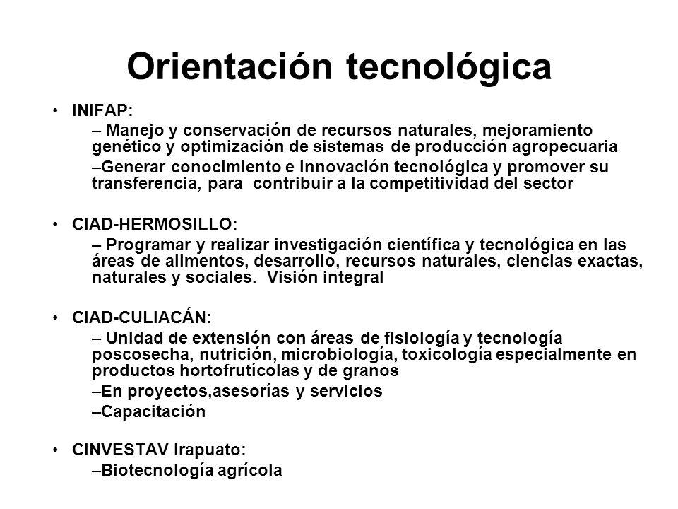 Orientación tecnológica