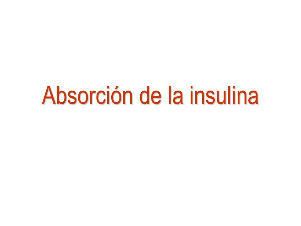 Absorción de la insulina