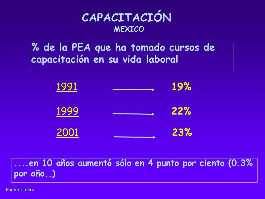CAPACITACIÓN MEXICO. % de la PEA que ha tomado cursos de capacitación en su vida laboral. 1991. 19%