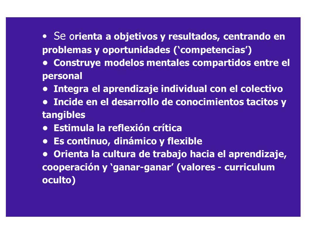 • Se orienta a objetivos y resultados, centrando en problemas y oportunidades ('competencias')