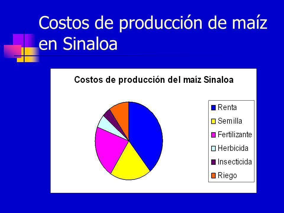 Costos de producción de maíz en Sinaloa