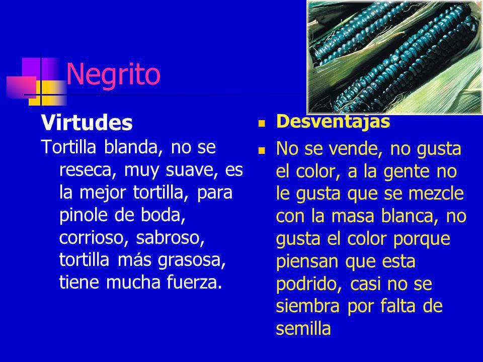 Negrito Virtudes Desventajas