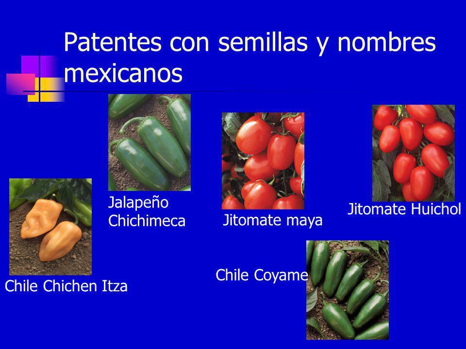 Patentes con semillas y nombres mexicanos