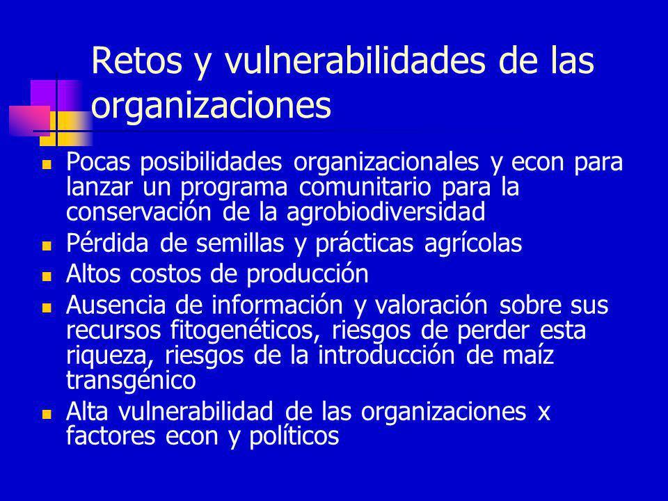 Retos y vulnerabilidades de las organizaciones