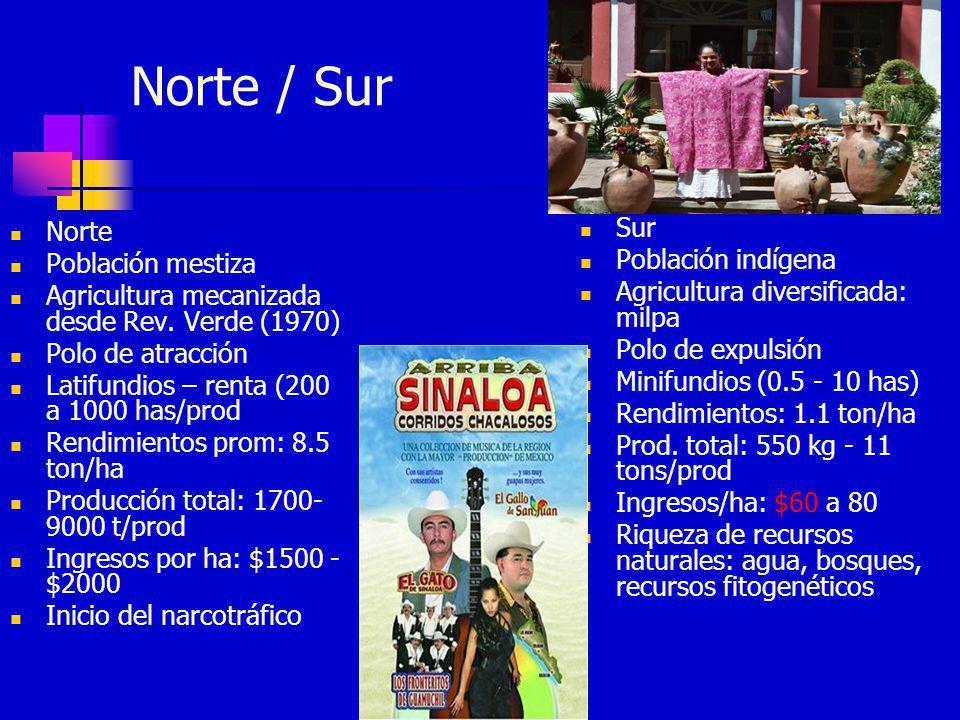 Norte / Sur Sur Norte Población indígena Población mestiza
